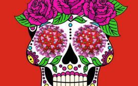 Cover Visioni Latino am img
