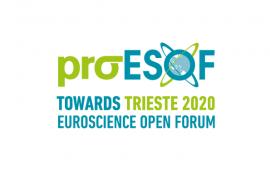 logo proesof