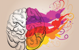 Twin Brain