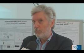 Embedded thumbnail for From food to health: più di 50 studenti di PhD alla conferenza internazionale di Alpe Adria