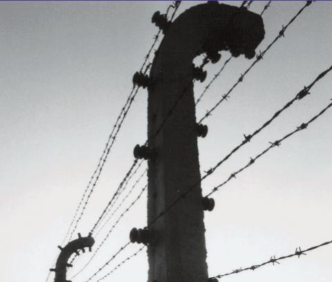 Auschwitz img