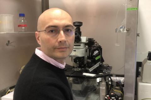 Lorenzo Cingolani
