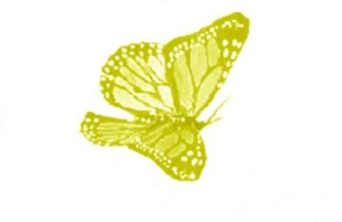 La farfalla è il simbolo delle disabilità