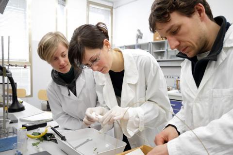 giovani ricercatori in laboratorio