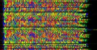 COVID19 Sequenza